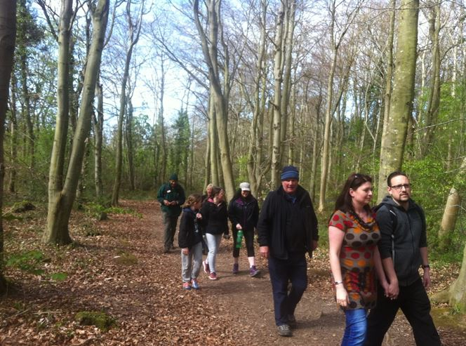 Volunteers walking through the woods
