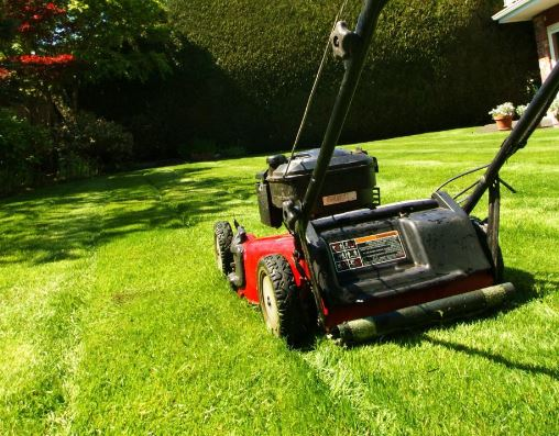 Lawnmover cutting grass