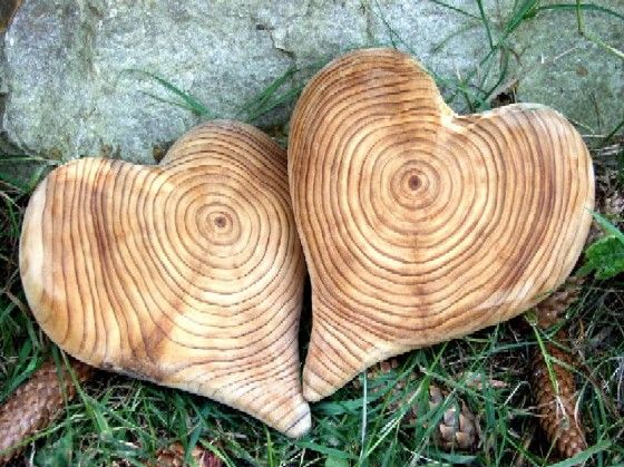 Hearts whittled out of wood