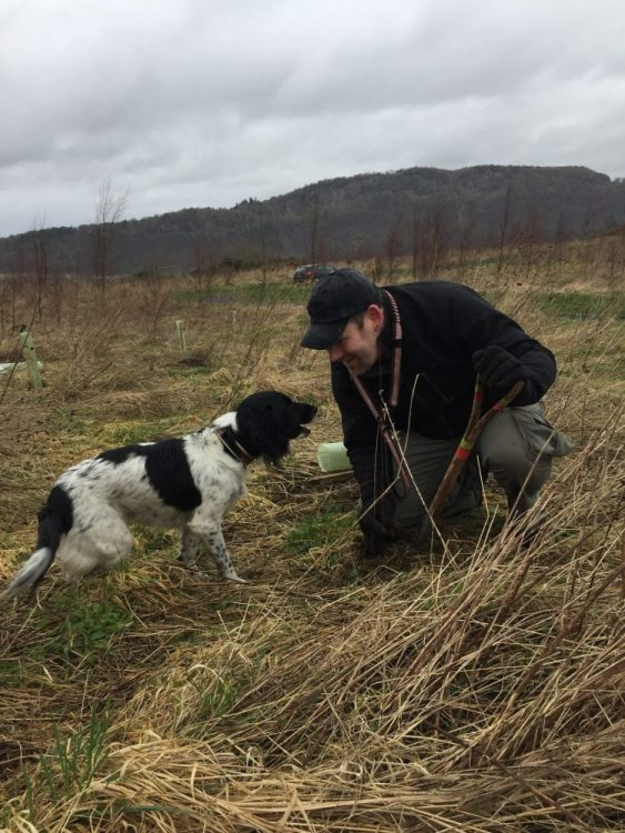 Man with a Springer spaniel