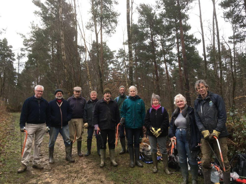 Volunteers at Brede High Woods