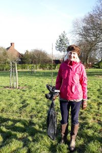 Photo of Lead Volunteer, Rosemary Capper-Ritchie with replacement pear tree