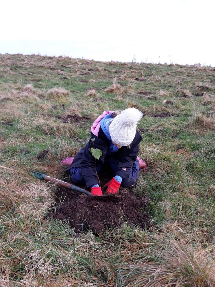 Tree planting at Kinclaven