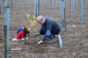 Man with dog planting a tree at Langley Vale Wood