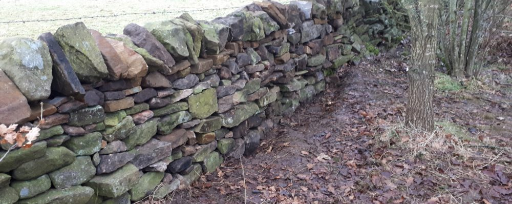Drystone Wall repair