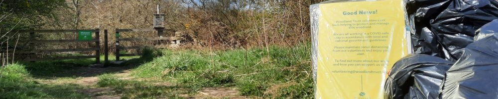 Litter pick at Castle Hill Wood